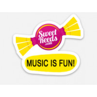 Music is Fun Vinyl Sticker